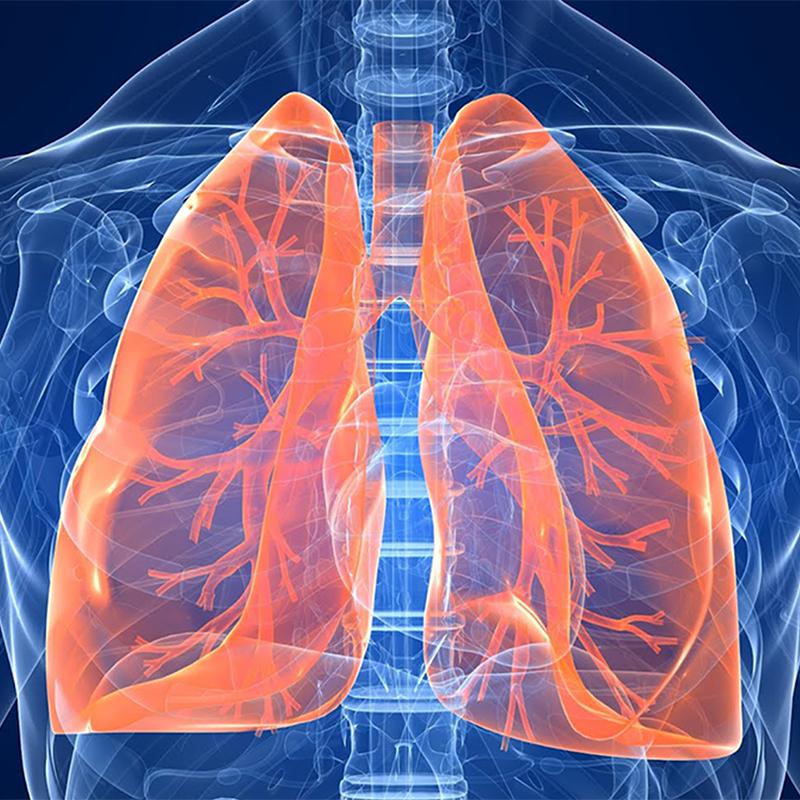 Analisi dei volumi polmonari