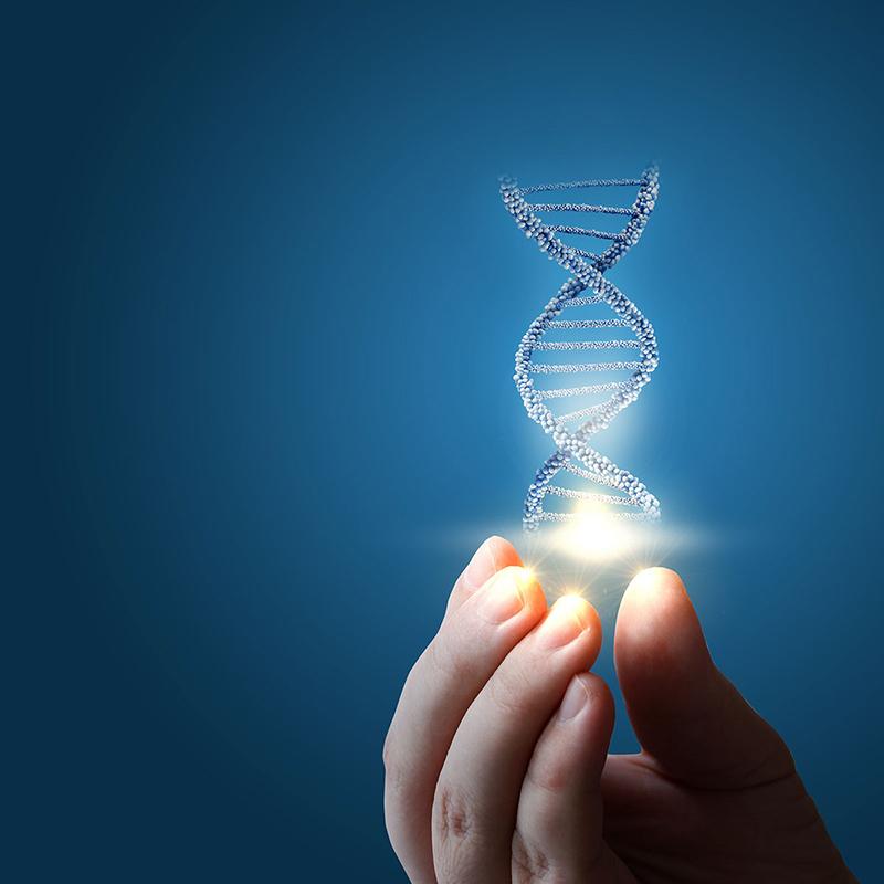 Test genomico: spire
