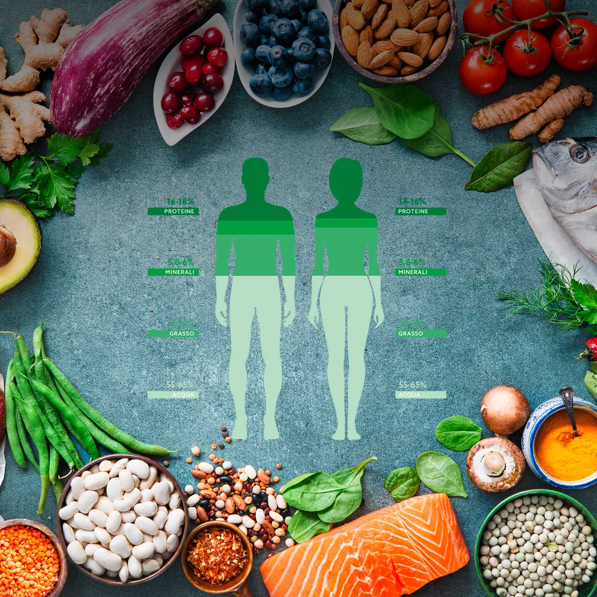 Calcola la tua composizione corporea
